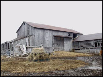 Prince Edwards Barn